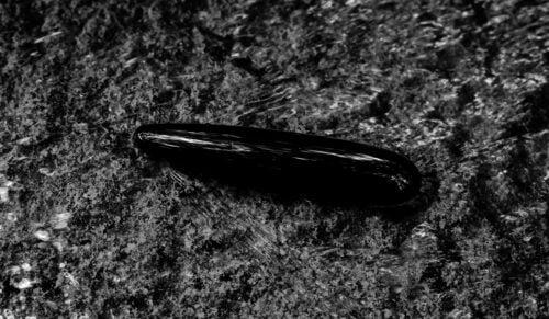 Kristalldildo aus Obsidian